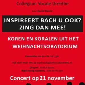 Afbeelding bij 12e Bachcantateproject van Collegium Vocale Drenthe
